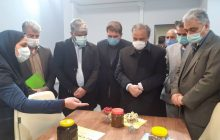 نخستین مرکز نوآوری و شتابدهی صنعت مس کشور در رفسنجان افتتاح شد