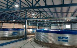 مزرعه ماهی خاویار در نوق رفسنجان تا پایان سال به بهره برداری می رسد